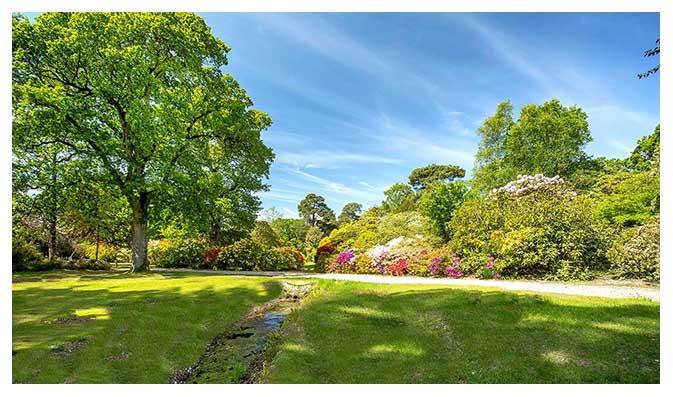 Exbury Gardens are situated in Hampshire, close to Southampton in the New Forest.