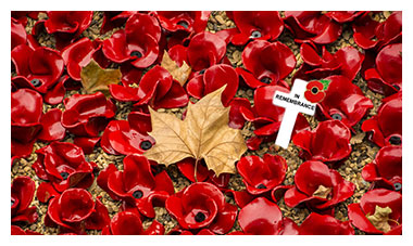 Here is my tribute to all who have lost their lives in conflicts for Queen & Country... We Will Remember Them...