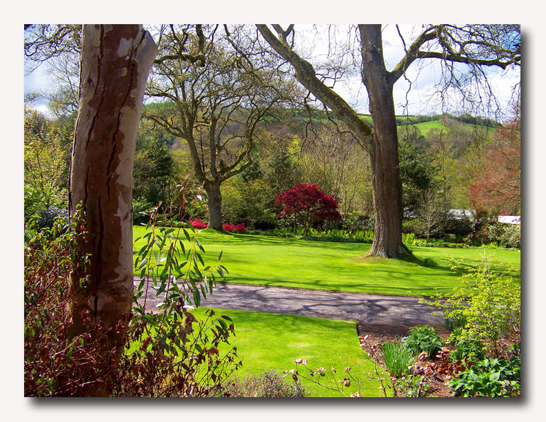 Rosemoor is a distinctive garden of contrasts that offers visitors a wealth of ideas to inspire and delight...